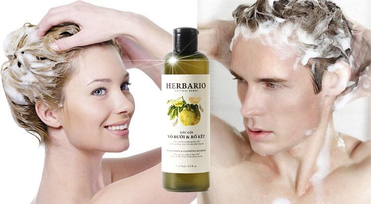 Tóc rụng nhiều nên dùng dầu gội nào tốt nhất